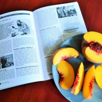 Článek Kláry Smolíkové v letním čísle časopisu Čtenář