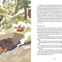 Klára Smolíková: Začarovaný Hvozd, ilustrovala Ester Kuchynková